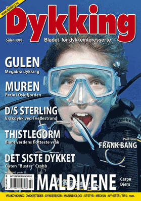 Dykking 2 2012